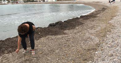 """Vecinas de Els Terrers denuncian el """"abandono"""" de esta playa de Benicàssim"""