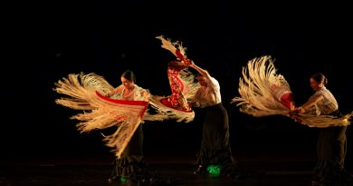 Un centenar de bailarines participan en la Cita con la Danza FIB